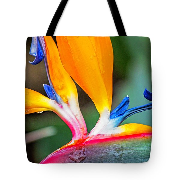 Bird Of Paradise After The Rain Tote Bag