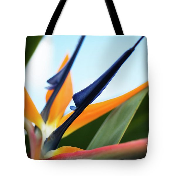 Tote Bag featuring the photograph Bird Of Paradise  by Charmian Vistaunet