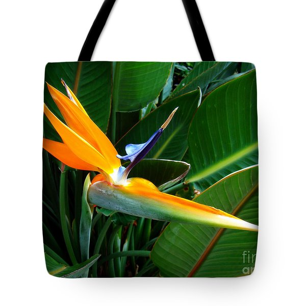 Tote Bag featuring the photograph Bird Of Paradise by Sue Melvin