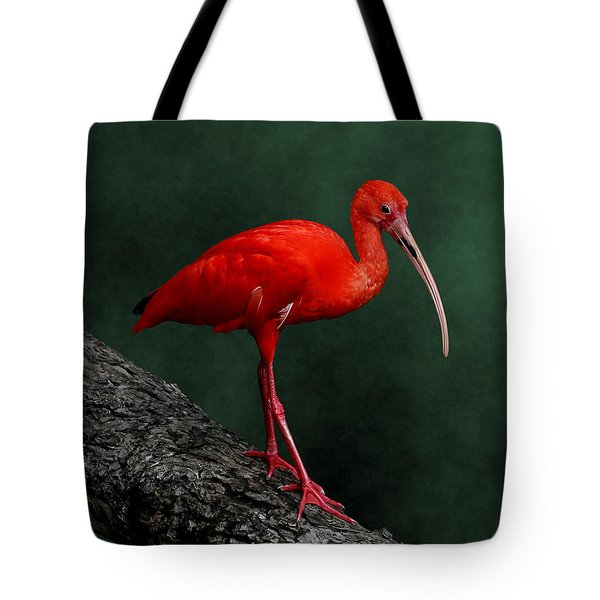 Bird On A Catwalk Tote Bag