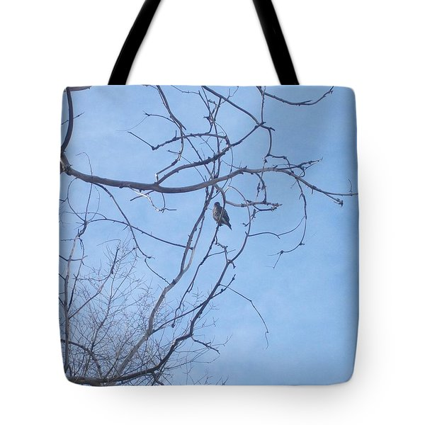 Bird On A Limb Tote Bag by Jewel Hengen