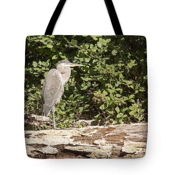 Bird On A Log Tote Bag
