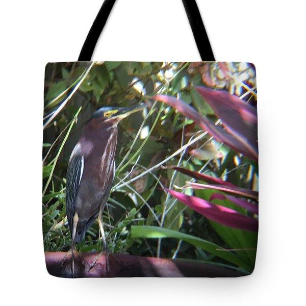 Bird On Bath Tote Bag