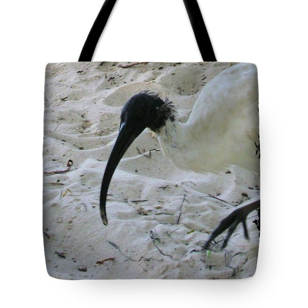 Bird On The Beach- Australia Tote Bag
