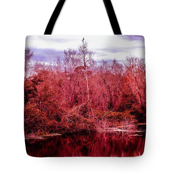 Tote Bag featuring the photograph Bird Out On A Limb 2 by Madeline Ellis