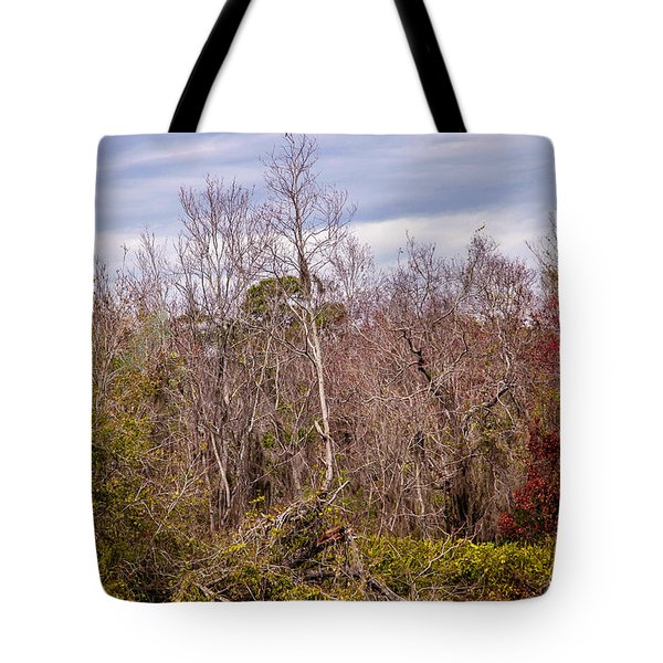 Tote Bag featuring the photograph Bird Out On A Limb 3 by Madeline Ellis