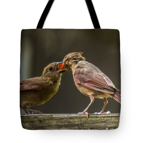 Bird Parenting Tote Bag