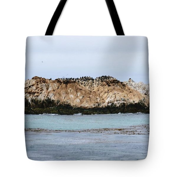 Bird Rock Tote Bag