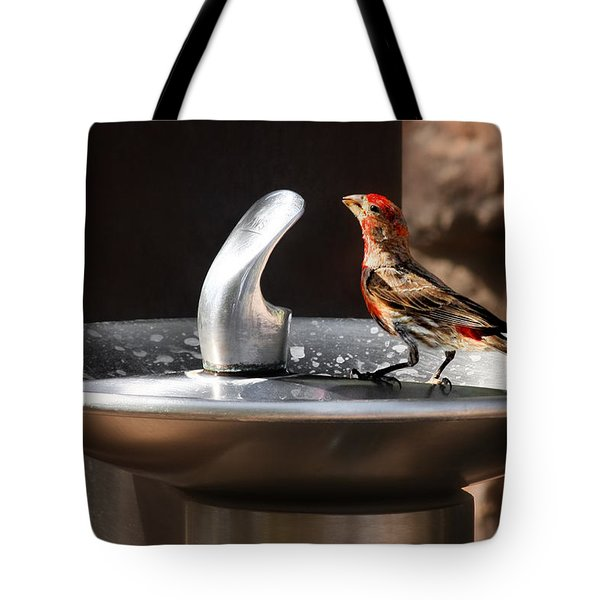 Bird Spa Tote Bag by Christine Till