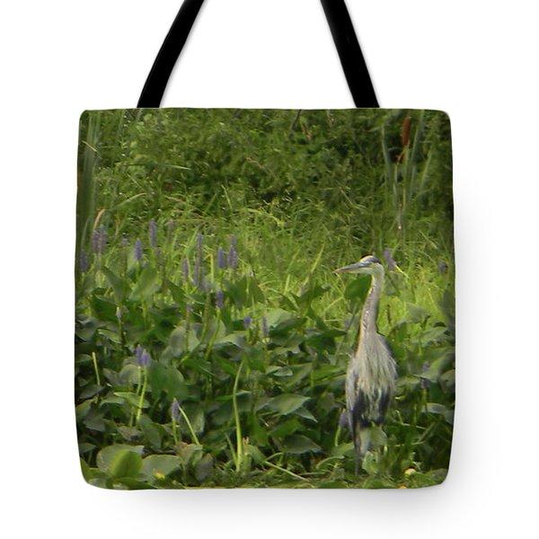Bird Waiting Tote Bag by Mark Minier