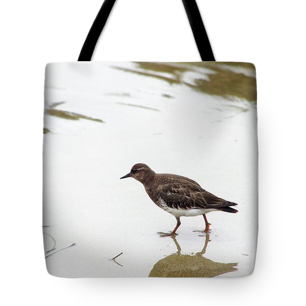 Tote Bag featuring the photograph Bird Walking On Beach by Mariola Bitner