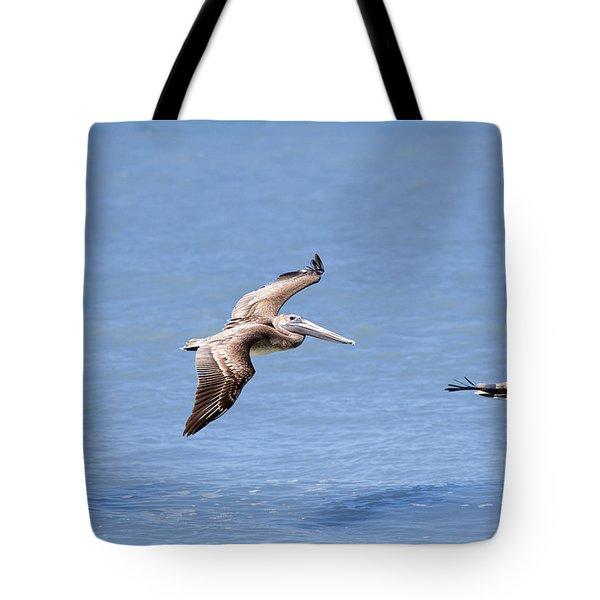 Birds 1039 Tote Bag