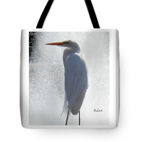 Birds And Fun At Butler Park Austin - Birds 2 Macro Poster Tote Bag by Felipe Adan Lerma