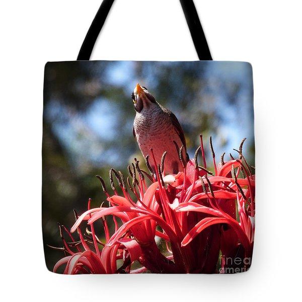 Bird's Eye View. Tote Bag