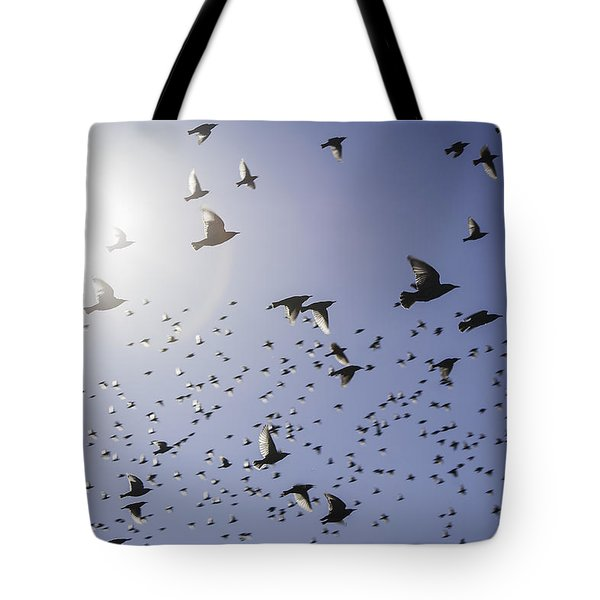 Tote Bag featuring the photograph Birds by Lynn Geoffroy