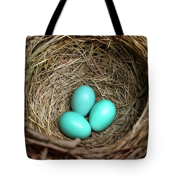 Birds Nest American Robin Tote Bag by Christina Rollo