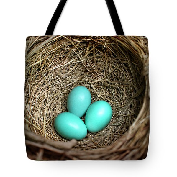Birds Nest American Robin Tote Bag