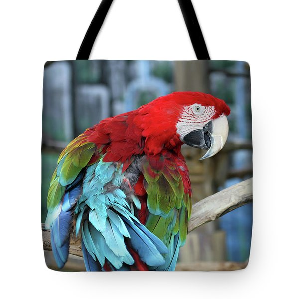 Tote Bag featuring the photograph Birds Of A Feather by Jackson Pearson