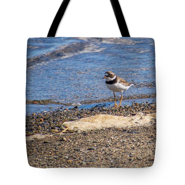 Birds Of Maine Tote Bag