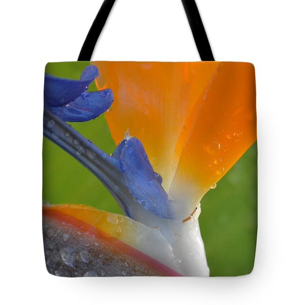 Birds Of Paradise Tote Bag by Kelly Wade