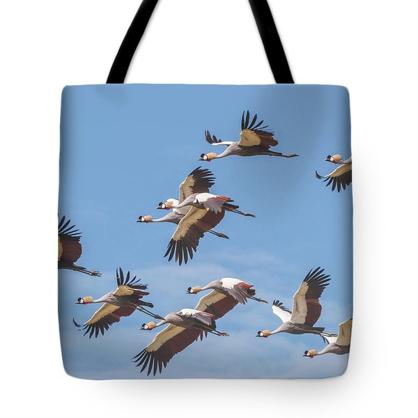 Birds Of The Same Feather. Tote Bag