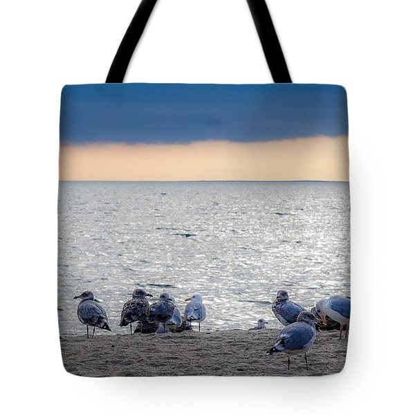 Birds On A Beach Tote Bag