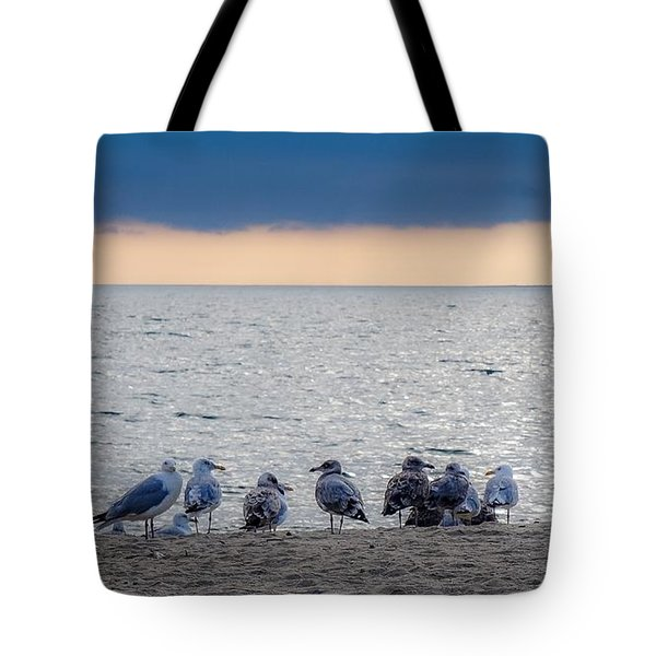 Tote Bag featuring the photograph Birds On A Beach by Kendall McKernon