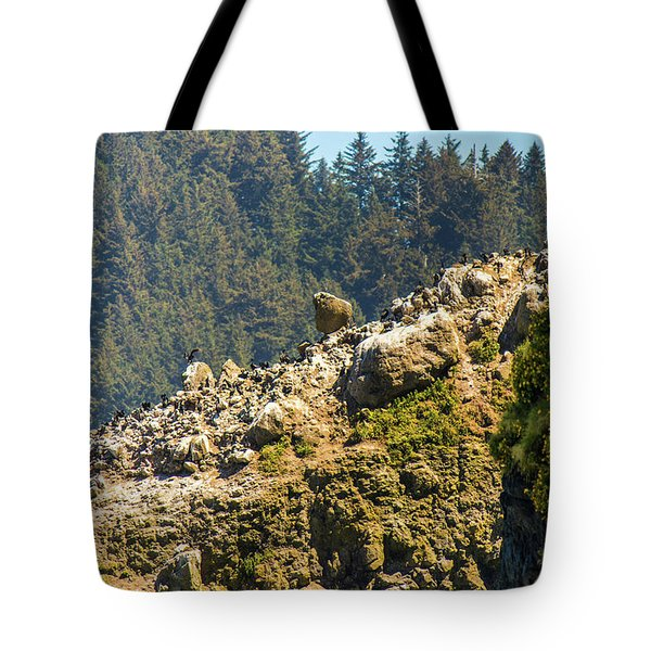 Tote Bag featuring the photograph Birds On The Rocks by Jonny D