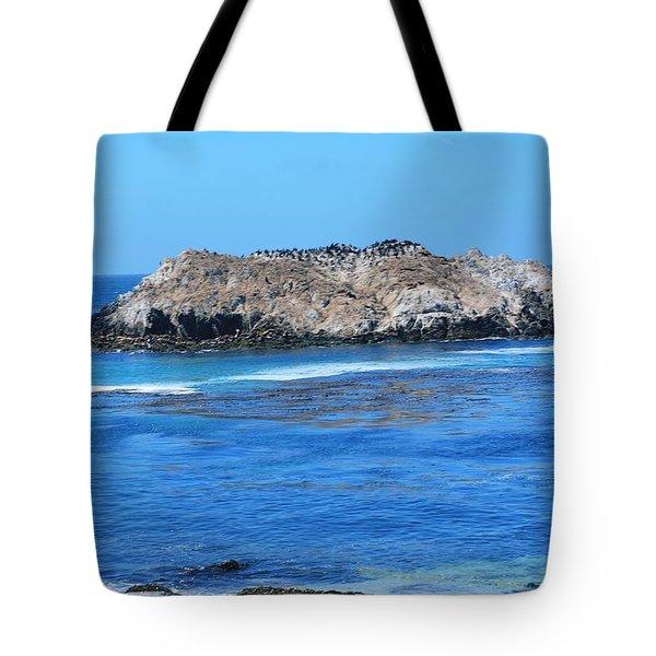 Bird Rock Tote Bag