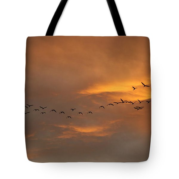 Birds Over San Miguel De Allende Tote Bag by John  Kolenberg