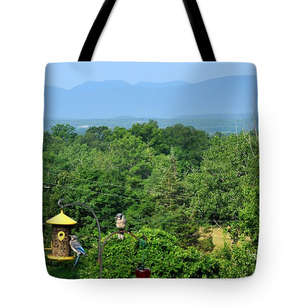 Tote Bag featuring the photograph Birds Overhudson Valley Ny by Diane Lent