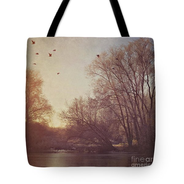 Tote Bag featuring the photograph Birds Take Flight Over Lake On A Winters Morning by Lyn Randle