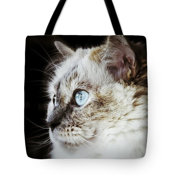 Tote Bag featuring the photograph Birdwatching by Karen Stahlros