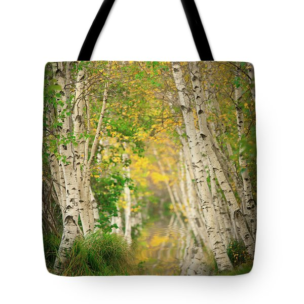 Tote Bag featuring the photograph Birtch Row  by Emmanuel Panagiotakis