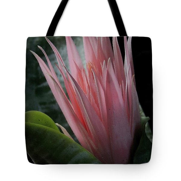 Birth Of A Bromeliad Tote Bag