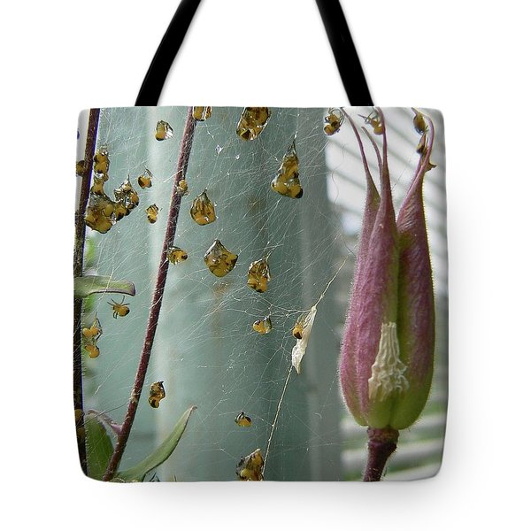 Birth Of A Spider Tote Bag by Pamela Patch