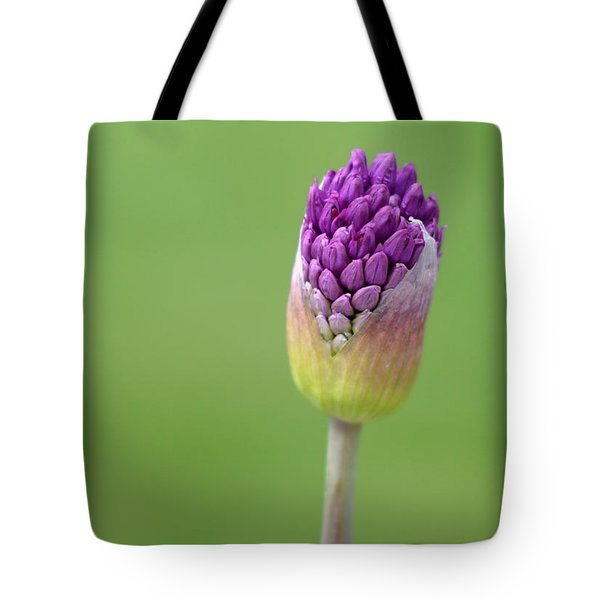Tote Bag featuring the photograph Birthing Springtime by Linda Mishler
