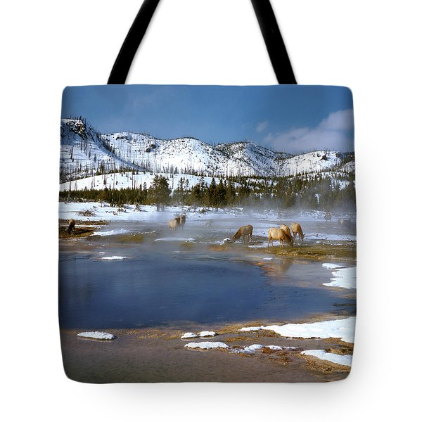 Biscuit Basin Elk Herd Tote Bag by Ed  Riche