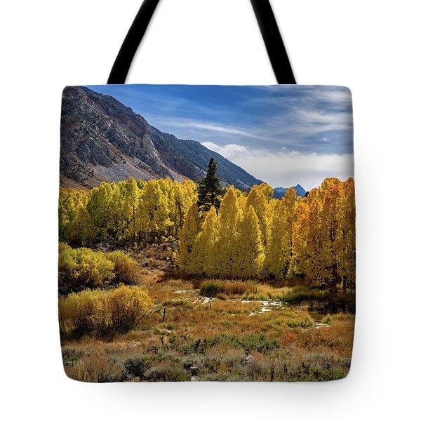 Bishop Creek Aspen Tote Bag