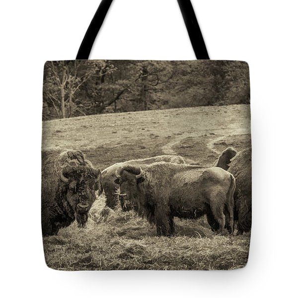 Tote Bag featuring the photograph Bison 1 - Pano by Joye Ardyn Durham