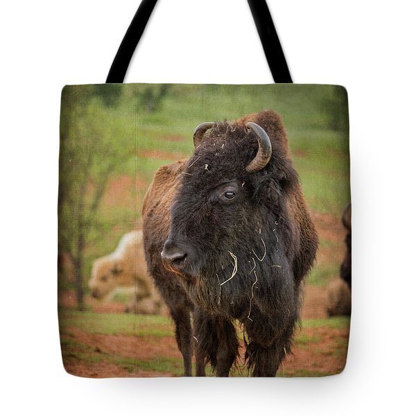 Tote Bag featuring the photograph Bison 5 by Joye Ardyn Durham