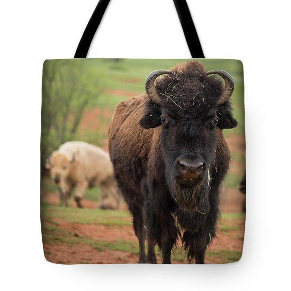 Tote Bag featuring the photograph Bison 6 by Joye Ardyn Durham