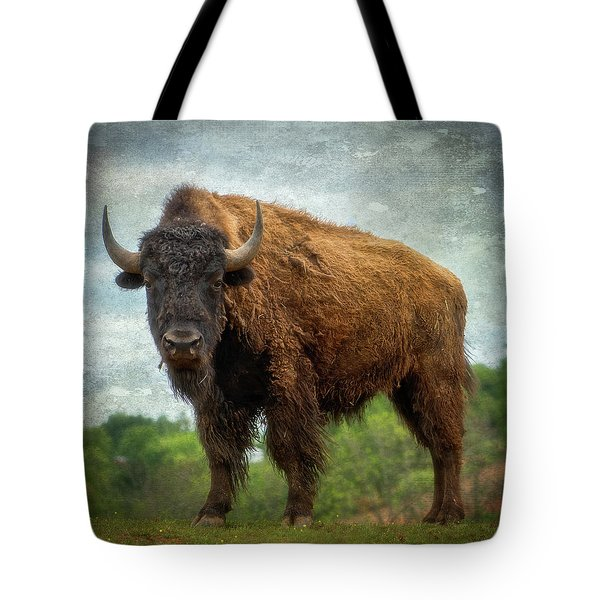 Tote Bag featuring the photograph Bison 9 by Joye Ardyn Durham