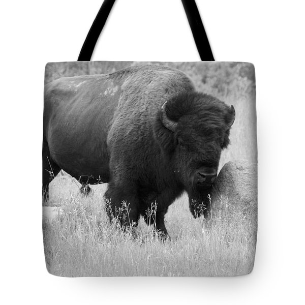 Bison And Buffalo Tote Bag
