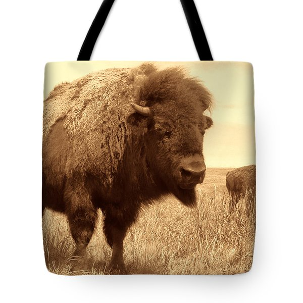 Bison And Calf Tote Bag by American West Legend By Olivier Le Queinec