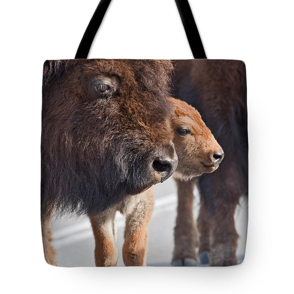 Bison And Calf Tote Bag