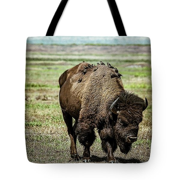 Tote Bag featuring the photograph Bison Bird Bus by Mary Hone