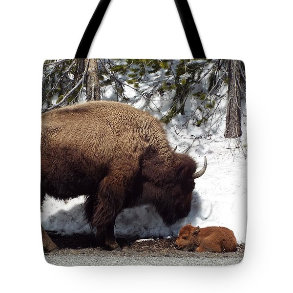 Bison Calf After Birth Tote Bag