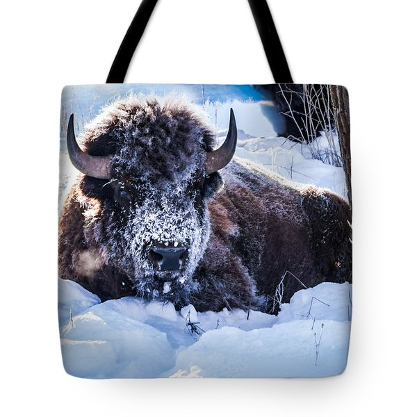 Tote Bag featuring the photograph Bison At Frozen Dawn by Yeates Photography