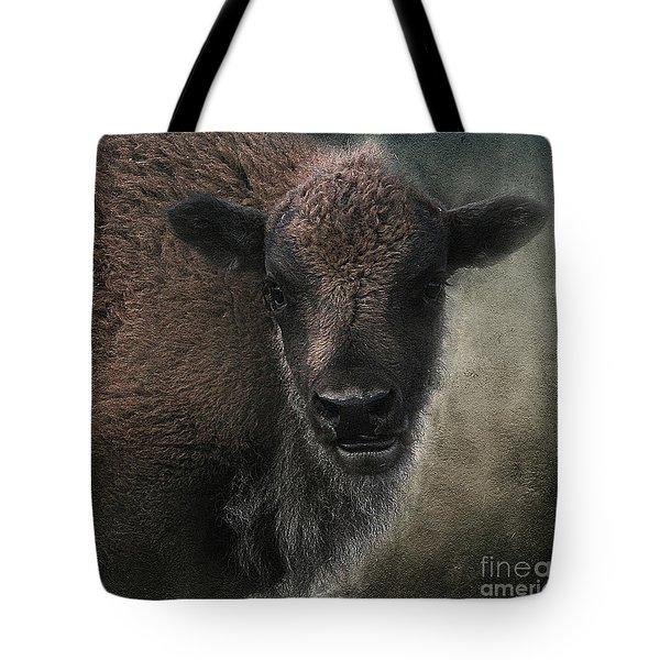 Bison Calf Staredown Tote Bag by Clare VanderVeen